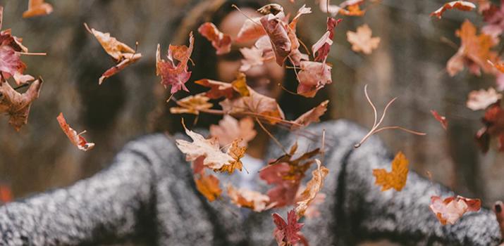 3 Things: Fall Edition